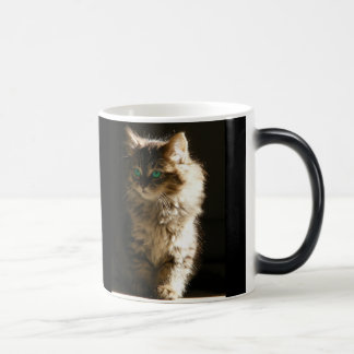 Magic Kitten Mugs