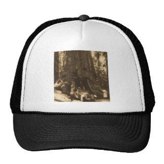 Magic Lantern Slide Maraposa Big Trees California Trucker Hat