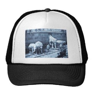 Magic Lantern Slide Ringling Bros Elephant Train Hat