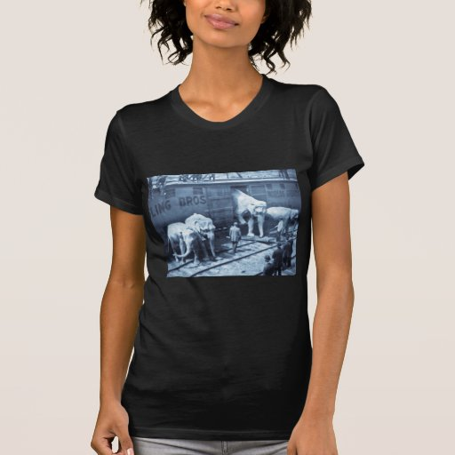 Magic Lantern Slide Ringling Bros Elephant Train Tee Shirts