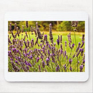 Magic Lavender Mouse Pad