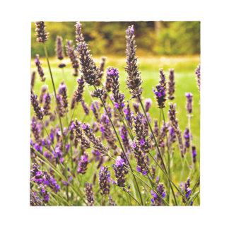 Magic Lavender Notepad