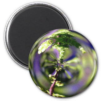Magic Magnification 2 Inch Round Magnet
