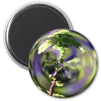 Magic Magnification Magnet