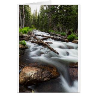 Magic Mountain Stream Card
