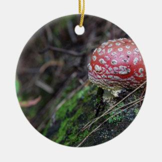 Magic Mushroom Ceramic Ornament