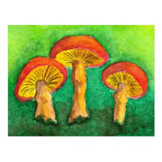 Magic Mushroom Trio Postcard