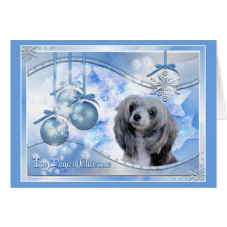 Magic of Christmas Chinese Crested Greeting Card