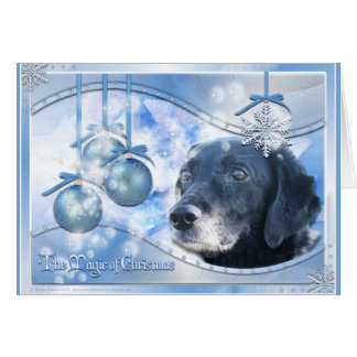 Magic of Christmas - Tess - Photo-3 Card