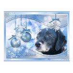 Magic of Christmas - Tess - Photo-3 Postcards