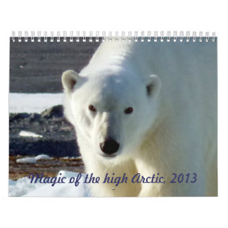 Magic of the high Arctic, 2013 Wall Calendars