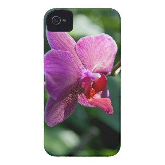 Magic orchid iPhone 4 Case-Mate case