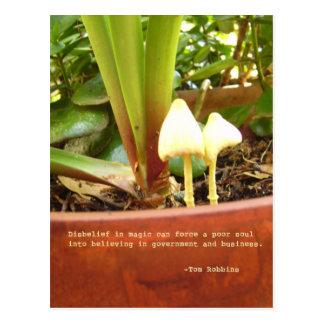 Magic postcard