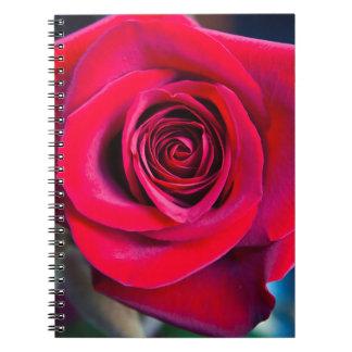 Magic rose notebooks