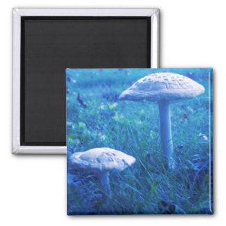 Magic Shroom In Blue Magnet