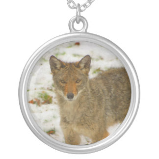 Magic the coyote necklace
