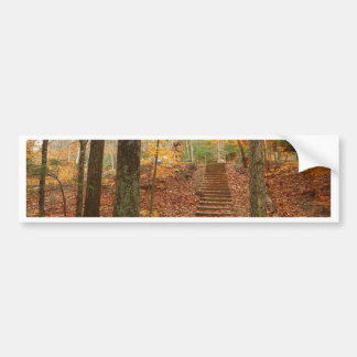 Magic Wood Stairs Bumper Sticker