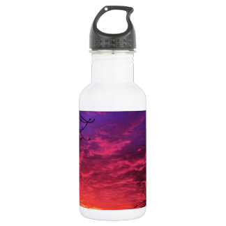 Magical Colorful Sunset Water Bottle