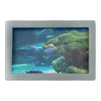 Magical Coral Reef Belt Buckle