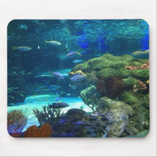 Magical Coral Reef Mouse Pad
