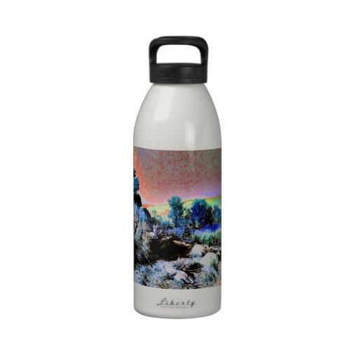 Magical Desert Water Bottles
