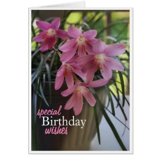 Magical Fairy Lilies Birthday Card