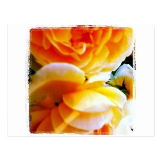 Magical Flower Postcard