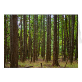 Magical Forest Greeting Cards