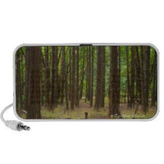 Magical Forest Speaker