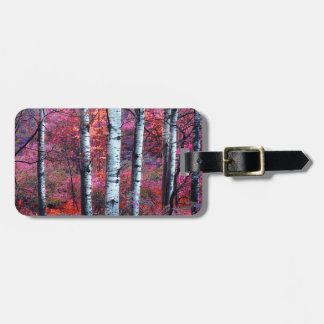 Magical Forest Tag For Luggage
