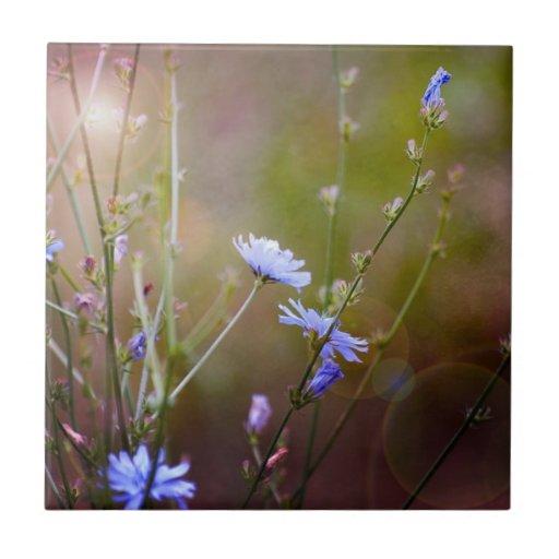 Magical Garden Wildflowers Tiles