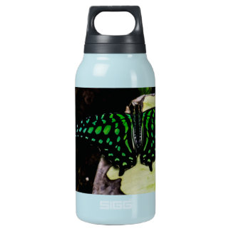 Magical Green Spotted Butterfly Insulated Water Bottle