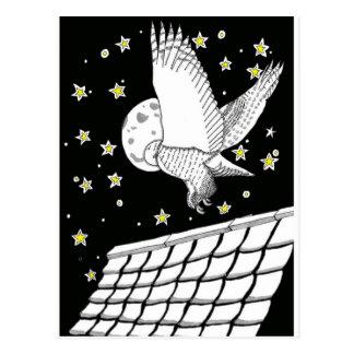 Magical Messenger Owl Postcard