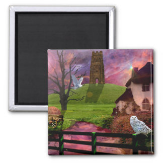 Magical mystery tor magnet