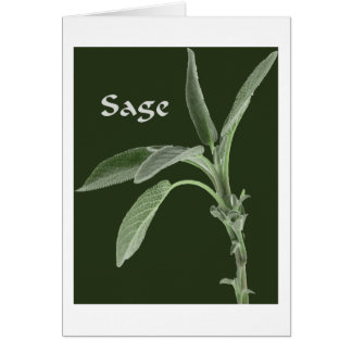 Magical Plants - Sage Card