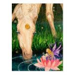 Magical Pond Unicorn & Fairy Fantasy postcard