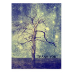 Magical Tree of The Universe Postcard
