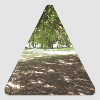 Magical Trees Triangle Sticker