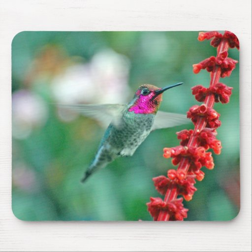 Magical Visitor on Friday the 13th Mouse Pads