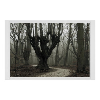 Magical Wood Poster