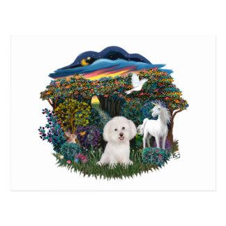Magical WOods - Bichon Frise Postcard