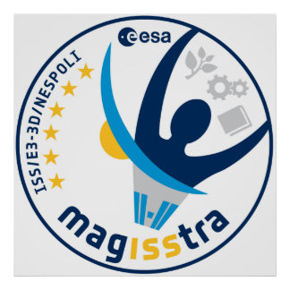 MagISStra Mission to the ISS Poster