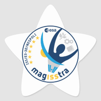 MagISStra Mission to the ISS Sticker