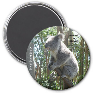 Magnet Adopt A Koala Australia ZIZZAGO Magnets