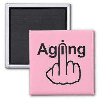 Magnet Aging Flip