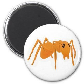 Magnet Ant