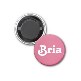 Magnet Bria