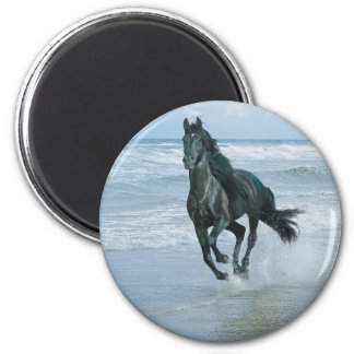 Magnet caballo imán redondo 5 cm