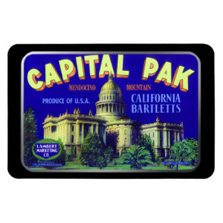 Magnet - Capital Pak, by GalleryGifts