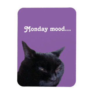 Magnet cat Monday mood by Billy Bernie